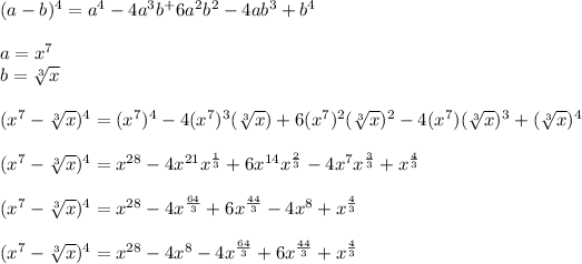 (a-b)^4=a^4-4a^3b^+6a^2b^2-4ab^3+b^4\\ \\a=x^7\\b= \sqrt[3]{x}\\ \\(x^7-\sqrt[3]{x})^4=(x^7)^4-4(x^7)^3(\sqrt[3]{x})+6(x^7)^2(\sqrt[3]{x})^2-4(x^7)(\sqrt[3]{x})^3+(\sqrt[3]{x})^4\\ \\ (x^7-\sqrt[3]{x})^4=x^{28}-4x^{21}x^{\frac{1}{3}}+6x^{14}x^{\frac{2}{3}}-4x^7x^{\frac{3}{3}}+x^{\frac{4}{3}}\\ \\(x^7-\sqrt[3]{x})^4=x^{28}-4x^{\frac{64}{3}}+6x^{\frac{44}{3}}-4x^8+x^{\frac{4}{3}}\\ \\(x^7-\sqrt[3]{x})^4=x^{28}-4x^8-4x^{\frac{64}{3}}+6x^{\frac{44}{3}}+x^{\frac{4}{3}}